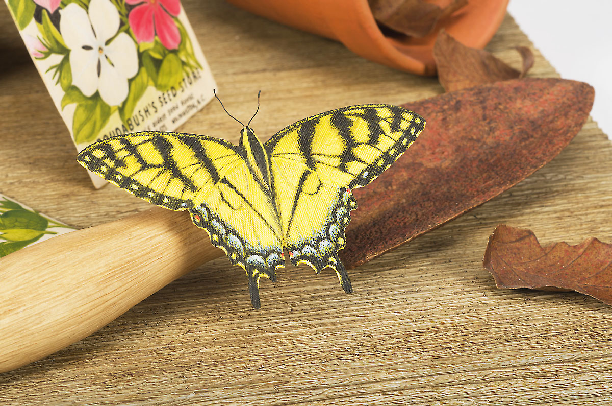 Pete Lupo - Wildlife Artist - A Spring Missed - Tiger Swallowtail Butterfly, Flower Pots, Seed Packets and Trowel